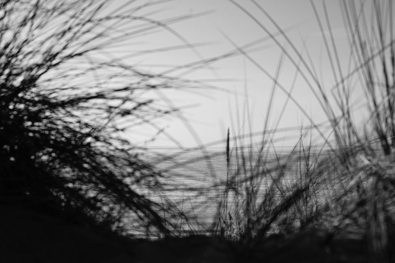 kollektivmaschine_photography__DSC6372